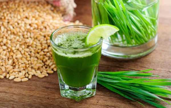 wheat-grass-benefits