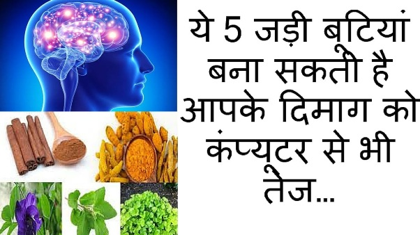 herbs-that-boost-your-brain-power-in-hindi