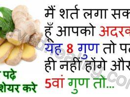 - ginger benefits in hindi 265x198 - आयुर्वेद हीलिंग