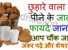 - benefits of chhuhara with milk in hindi 265x198 - आयुर्वेद हीलिंग