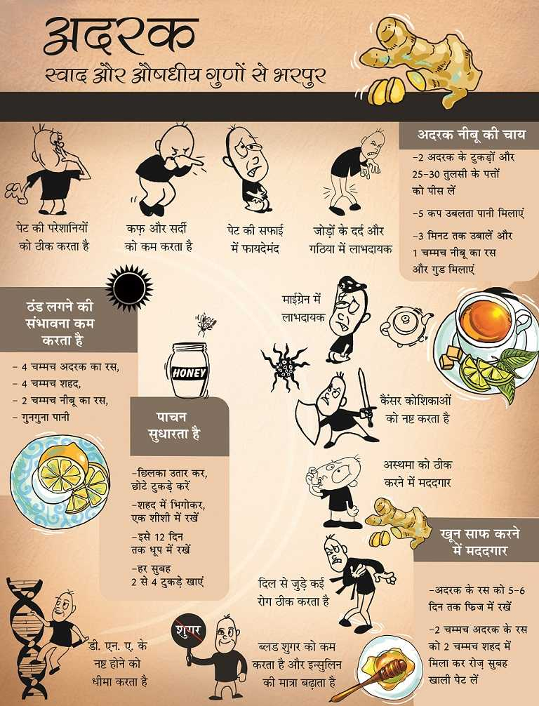 अदरक खाने के फायदे - Ginger Infographic final Hindi 1 - अदरक खाने के 9 फायदे, Adrak khane ke fayde in hindi